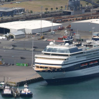Location, Location, Location – Getting The Best From Your Tauranga Cruise Tours