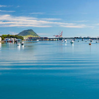 Independent Guided Tour Tauranga – Enjoy the Freedom!